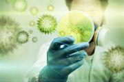 Дезинфекция от вирусов